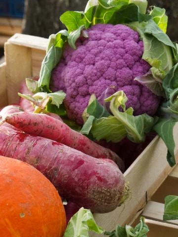 Εποχιακά Χειμωνιάτικα Λαχανικά και Φρούτα