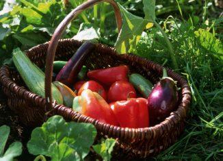 Φρέσκα Φρούτα και Λαχανικά Ιούνιος