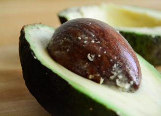 Αβοκάντο Συνταγές