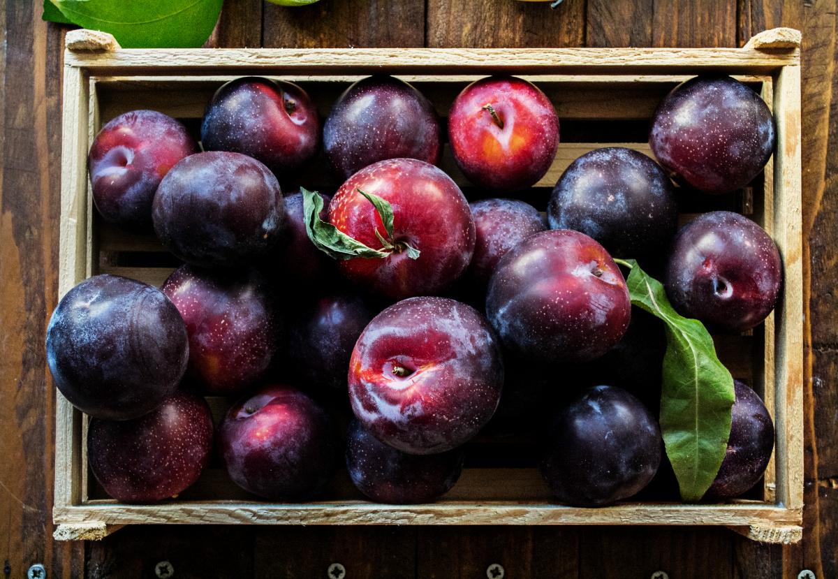 Βανίλιες-Δαμάσκηνα Φρούτα